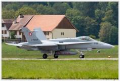 2019-Payerne-Schweizer-Luftwaffe-F18-Hornet_057