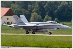2019-Payerne-Schweizer-Luftwaffe-F18-Hornet_059