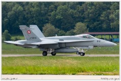 2019-Payerne-Schweizer-Luftwaffe-F18-Hornet_065