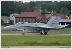 2019-Payerne-Schweizer-Luftwaffe-F18-Hornet_072