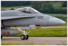 2019-Payerne-Schweizer-Luftwaffe-F18-Hornet_075