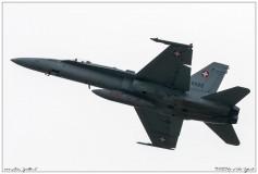 2019-Payerne-Schweizer-Luftwaffe-F18-Hornet_003