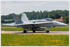 2019-Payerne-Schweizer-Luftwaffe-F18-Hornet_027