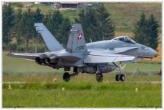 2019-Payerne-Schweizer-Luftwaffe-F18-Hornet_041