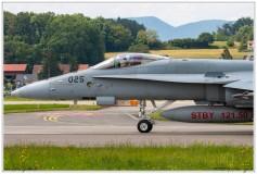 2019-Payerne-Schweizer-Luftwaffe-F18-Hornet_046