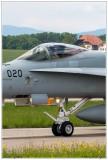 2019-Payerne-Schweizer-Luftwaffe-F18-Hornet_052