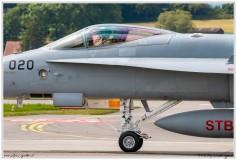 2019-Payerne-Schweizer-Luftwaffe-F18-Hornet_055
