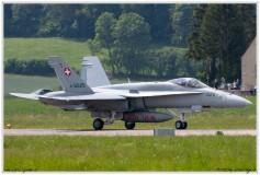 2019-Payerne-Schweizer-Luftwaffe-F18-Hornet_058