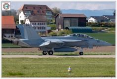 2019-F18-super-hornet-swiss-payerne-091