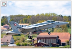 2019-F18-hornet-swiss-payerne-057