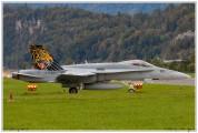 2019-Meiringen-F-18-Puma-EC-635-013
