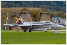 2019-Meiringen-F-18-Puma-EC-635-011
