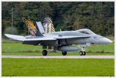 2019-Meiringen-F-18-Puma-EC-635-020