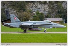 2019-Meiringen-F-18-Puma-EC-635-023