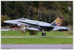 2019-Meiringen-F-18-Puma-EC-635-026