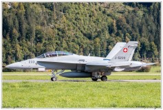 2020-meiringen-f-18-f-5-hornet-tiger-003