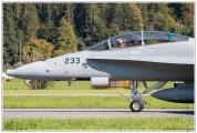 2020-meiringen-f-18-f-5-hornet-tiger-004