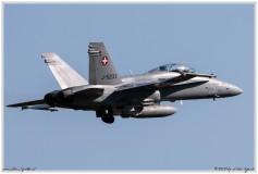 2020-meiringen-f-18-f-5-hornet-tiger-012