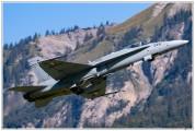 2020-meiringen-f-18-f-5-hornet-tiger-016