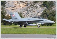 2020-meiringen-f-18-f-5-hornet-tiger-026