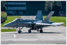 2020-meiringen-f-18-f-5-hornet-tiger-030