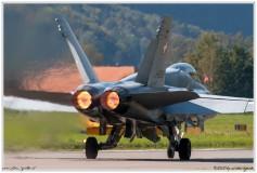 2020-meiringen-f-18-f-5-hornet-tiger-068