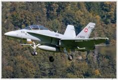 2020-meiringen-f-18-f-5-hornet-tiger-069