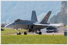 2020-meiringen-f-18-f-5-hornet-tiger-098
