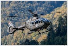 2020-meiringen-f-18-f-5-hornet-tiger-101