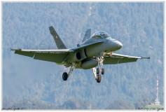 2020-meiringen-f-18-f-5-hornet-tiger-136