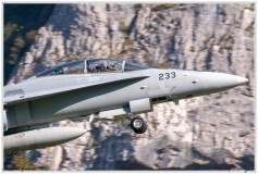 2020-meiringen-f-18-f-5-hornet-tiger-010
