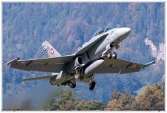 2020-meiringen-f-18-f-5-hornet-tiger-023