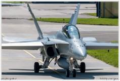 2020-meiringen-f-18-f-5-hornet-tiger-037