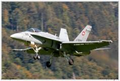 2020-meiringen-f-18-f-5-hornet-tiger-090
