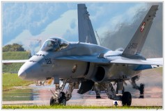 2020-meiringen-f-18-f-5-hornet-tiger-096