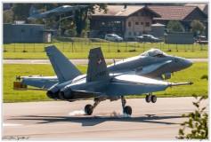 2020-meiringen-f-18-f-5-hornet-tiger-133