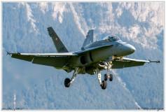 2020-meiringen-f-18-f-5-hornet-tiger-134